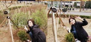 T-ara殷晶植樹節在T-ara樹林種樹