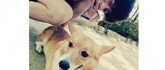 【投票結果】粉絲最希望當EXO伯賢的愛犬一天