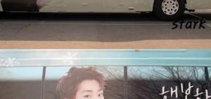 首爾出現'Xiumin公車'粉絲祝偶像生日快樂