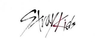 JYP新選秀定名《Stray Kids》 甄選下一代偶像男團