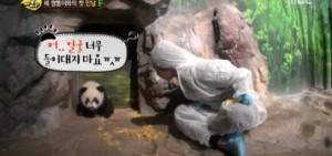 Yuri遇可愛萌寵熊貓 害羞得甚至難溝通