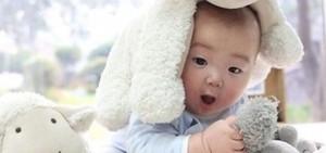 大韓-民國-萬歲,扮成小羊來拜年