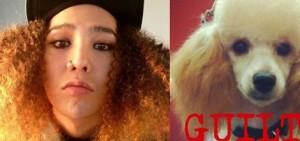 14位K-POP IDOL 表演Copycats