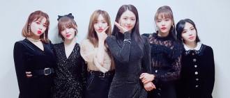 AOA日本粉絲見面會臨時喊卡 「取消原因曝光」粉絲錯愕:要解散了嗎