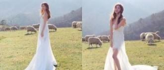 李多海牧場婚紗照公開 獲贊「最美新娘」